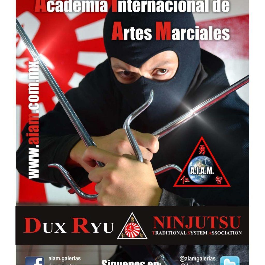 Dux Ryu Magazine 07 Page 034