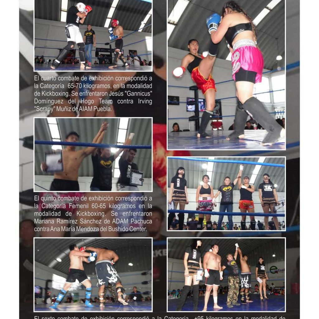 Dux Ryu Magazine 10 Page 014