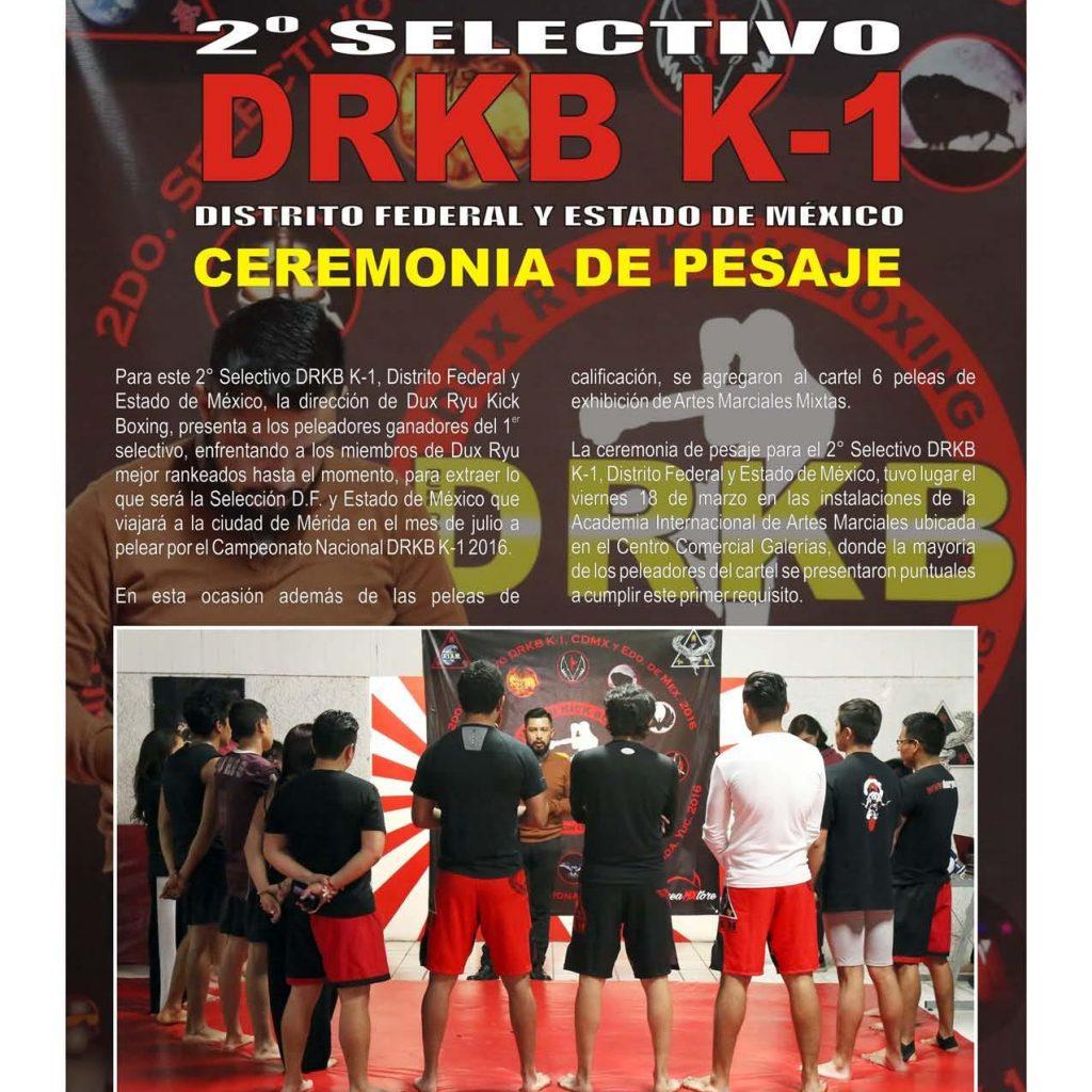 Dux Ryu Magazine 10 Page 019